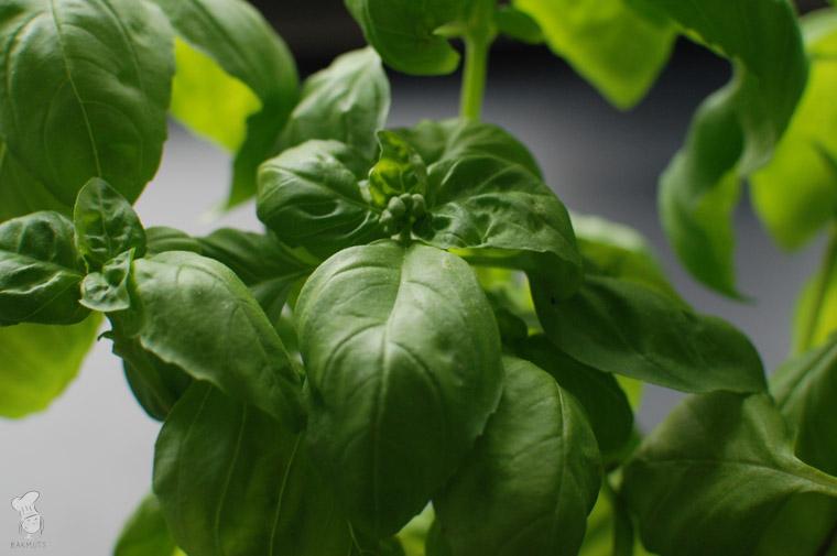 Pesto alla Genovese groene pesto recept bakmuts