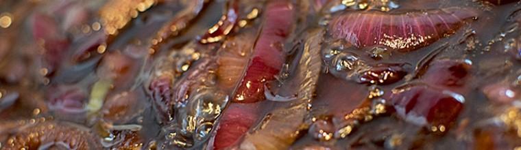 rode uienchutney recept bakmuts